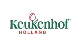 جشنواره گل کوکنهوف (Keukenhof Holland)